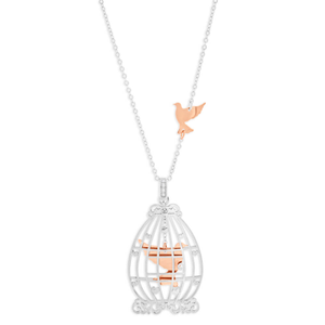 Gold Plated Sterling Silver Bird Cage Pendant With 70 + 5cm Chain